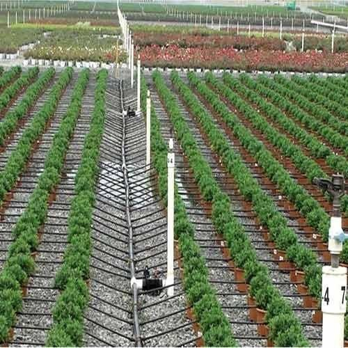 Why Drip Irrigation System In India Is Not A Widespread Phenomenon
